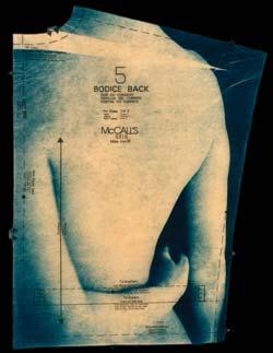 Bodice back by Francis Baker