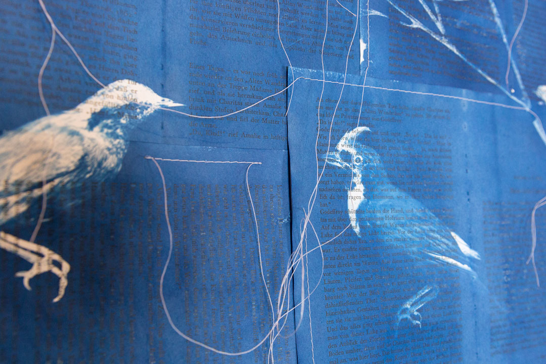<b>Contested Biography I (Quadrat) 2017 </b><br /> detail view<br /> Cyanotype on 1980 edition of Amalie Dietrich: Ein Leben by Charitas Bischoff, stitched, 138 x 216 cm approx.