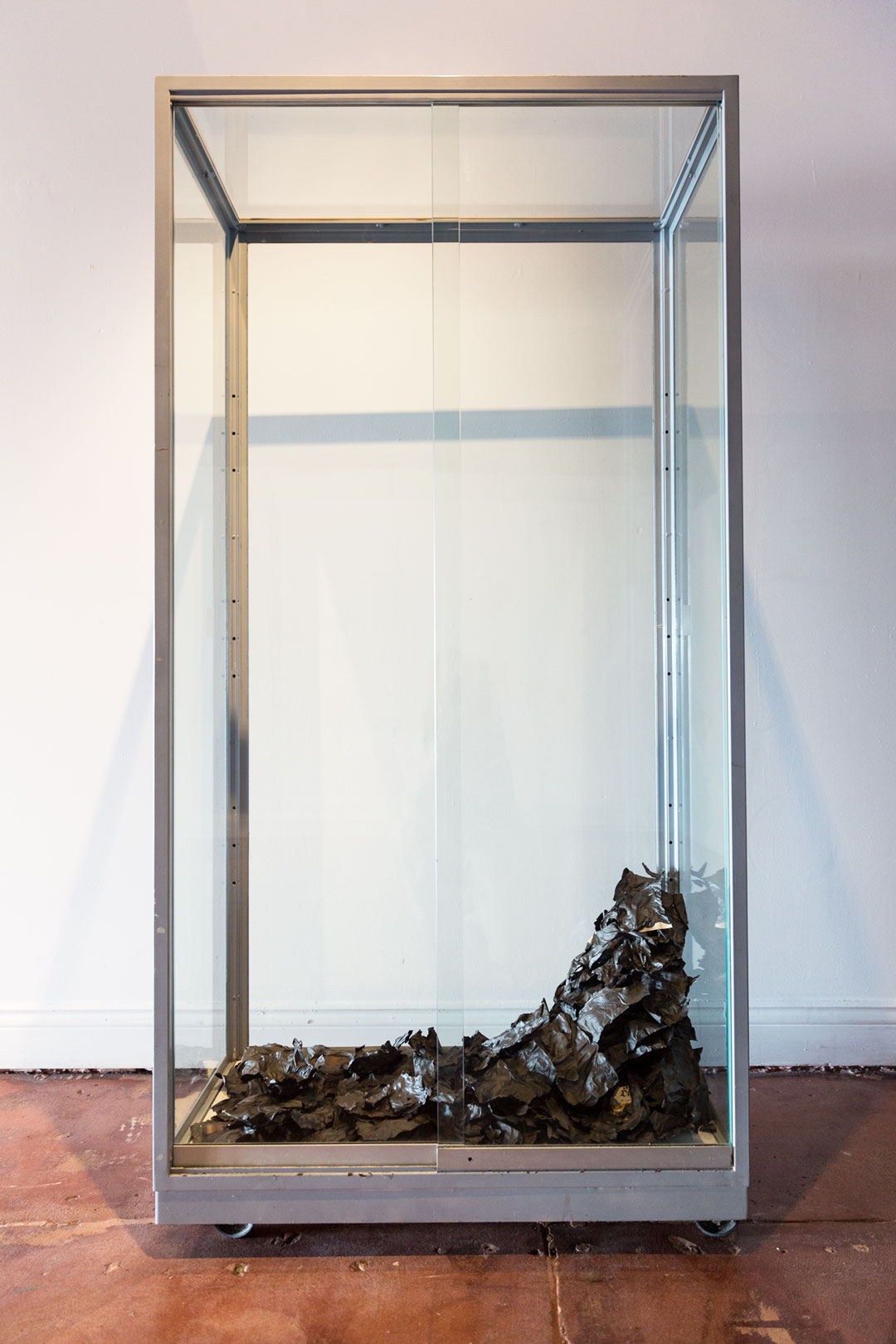 <b>Contested Biography II (in memory of the lost) 2017</b><br /> installation view, POP Gallery<br /> Burnt 1979 edition of Amalie Dietrich: Ein Leben by Charitas Bischoff, glass display cabinet, speaker, digital audio track.