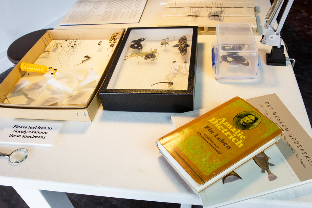 <b>Entomology research lab 2017</b><br /> detail of installation view<br /> Stereomicroscope live streaming via digital video camera to LCD screen, lamp, photographic prints, insect specimens pinned and wet, entomology tools and pins, books, various laboratory consumables, PPE, workbench and stool