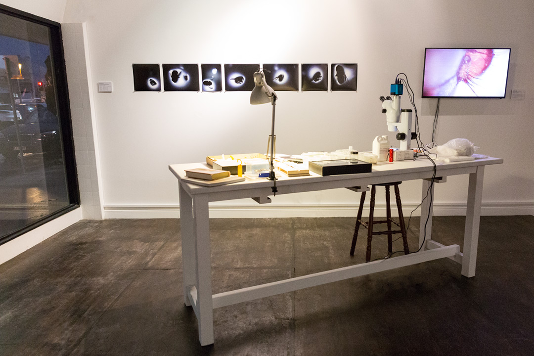 <b>Entomology research lab 2017 </b><br /> installation view<br /> Stereomicroscope live streaming via digital video camera to LCD screen, lamp, photographic prints, insect specimens pinned and wet, entomology tools and pins, books, various laboratory consumables, PPE, workbench and stool.