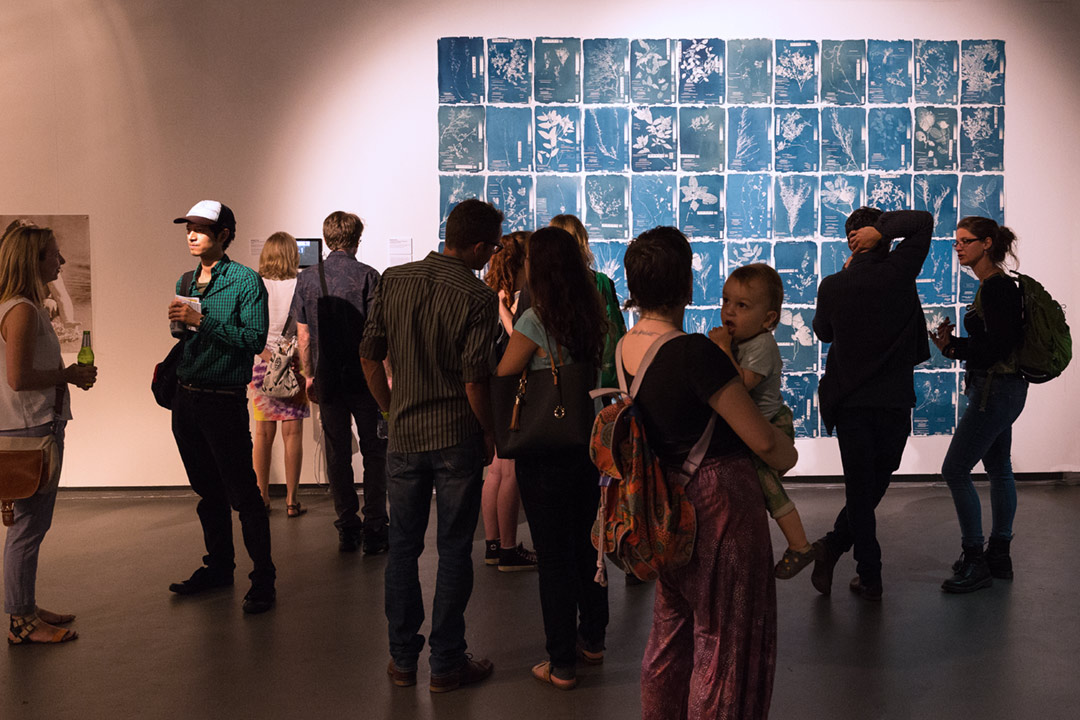 <b>Herbarium Hamburgense 2016-2017</b>Installation view, Sculpture 16, Queensland College of Art<br /> Cyanotypes on Canson Edition, edition of 10, each image 30 x 42 cm.